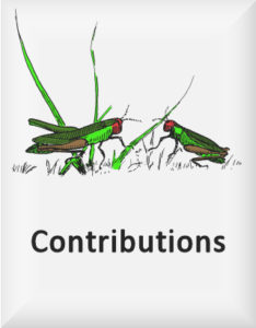 Ransome's drawing of grasshoppers, our contributions logo