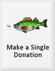 Ransome's drawing of a perch chasing a minnow, our single donations logo